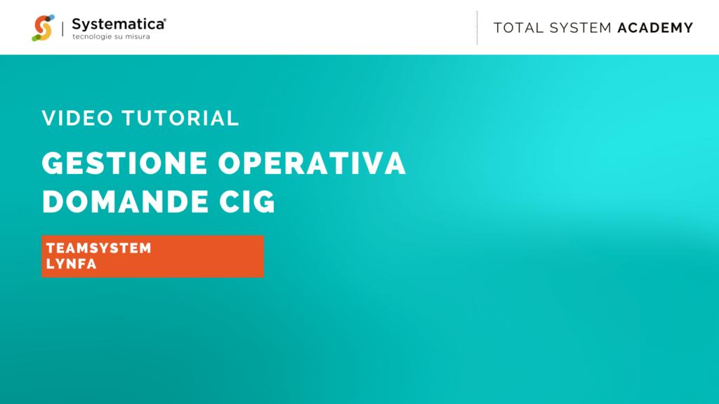Gestione operativa domande CIG